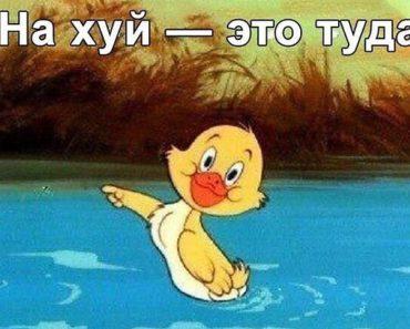 Почему стоит послать Яндекс нахуй